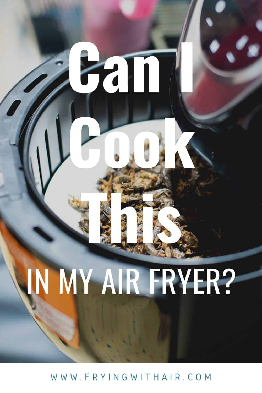 What Can You Not Cook In An Air Fryer (1)